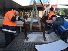 Bronzen paarden terug in winkelcentrum de Gagel: 'Nooit gedacht dat ze nog terug zouden komen'