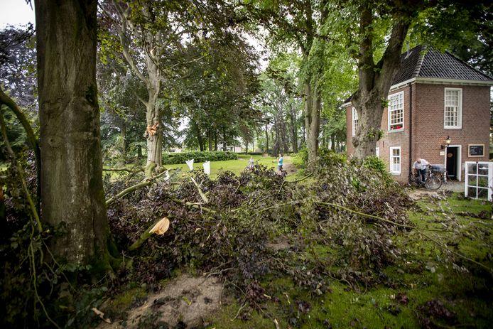 Twee jaar geleden knapten tijdens een storm ook al grote takken af in Engels' Tuin.