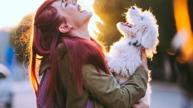 Hondenliefhebbers opgelet: dankzij deze droomjob mag je betaald met puppy's knuffelen