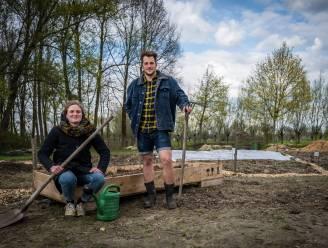 """""""Groenten en fruit kweken met respect voor natuur"""": Lize (23) en Roel (24) zijn gezichten achter 'Jardin Gerard'"""