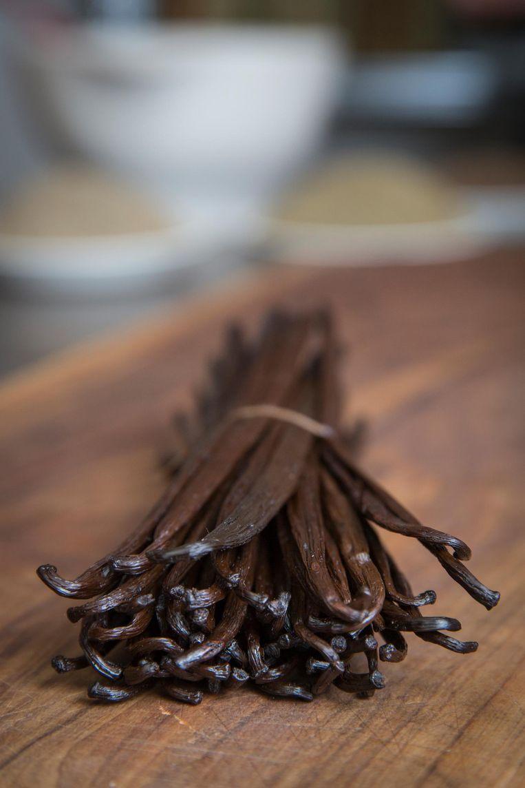 'In Madagaskar vonden we echte vanille, zo anders dan die korte, verdroogde stokjes hier' Beeld Dingena Mol