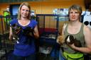 Dierenasiel Gorinchem-medewerkers Anke (links) en Brenda zien de laatste tijd steeds meer coronahuisdieren binnen gebracht worden.