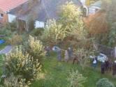 Ruinerwold een maand na de inval: 'Internationale journalisten stonden gewoon met hun camera's bij ons in de tuin'