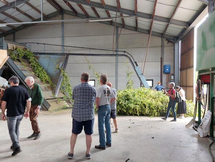 POPERINGE Een bezoek aan het hedendaagse familiehopbedrijf 'Belhop' van Annebel Vandenbroucke en Bart Boeraeve, het vernieuwde hopbedrijf van Paul en Daan Soenen en het eigentijdse biohopbedrijf van Joris Cambie (foto) stond op de planning tijdens 'Toeren langs Hopboeren'.