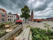 Oproep aan de raad voor meer bomen op de Markt: 'Het gaat om het aanzien van Zevenbergen'