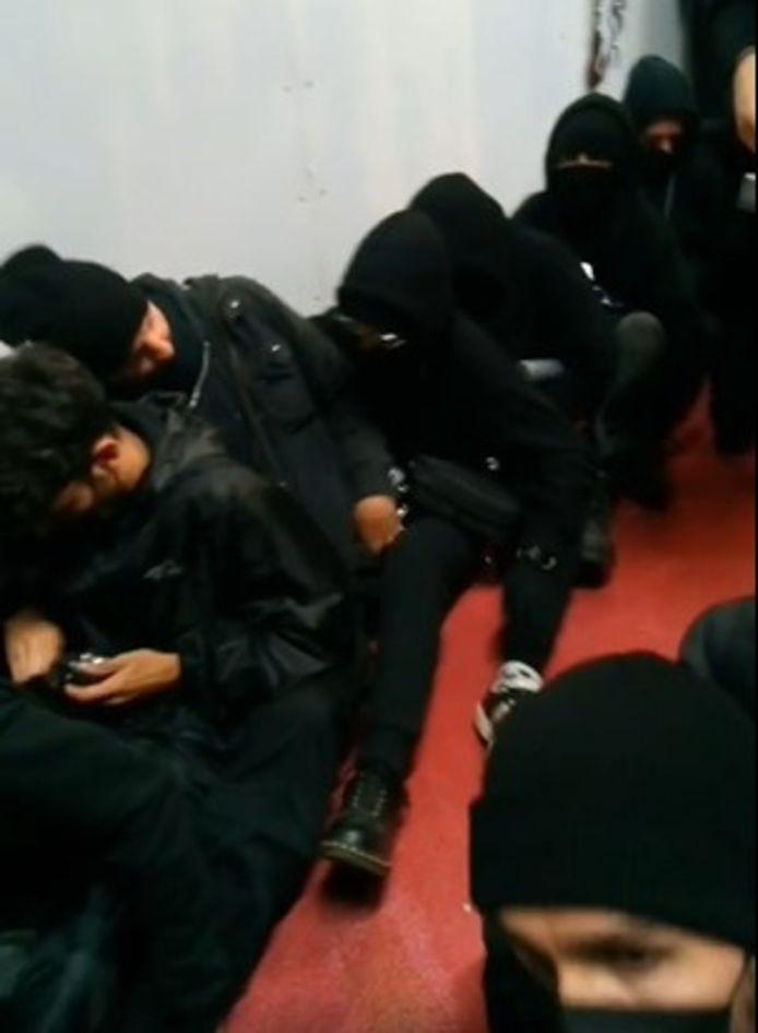 Videostill van de actie van 269 Libération Animale bij Ekro.