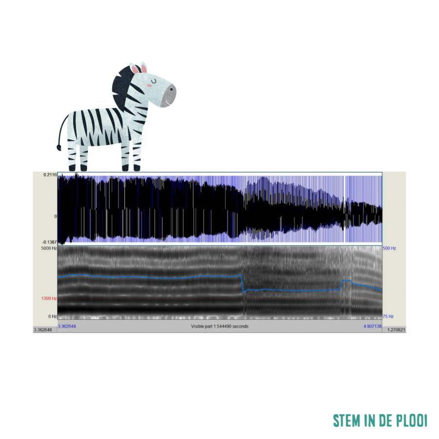 De strepen va een zebra zijn zoals het strepenpatroon op een spectrogram om stemkwaliteit te meten.
