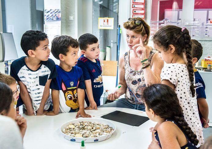 Alle scholen in de regio Den Bosch laten groepen los en gaan in units werken. Of met alle kinderen van dezelfde leeftijd (bijvoorbeeld drie groepen 3) die samen komen te zitten, of met bouwen (bijvoorbeeld groep 3, 4, 5).