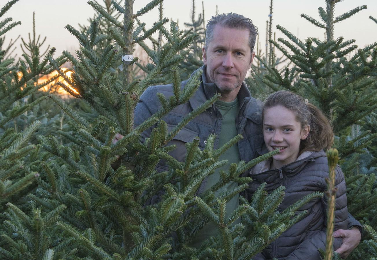 Hoe Houd Ik De Kerstboom Groen Nuenen Ed Nl