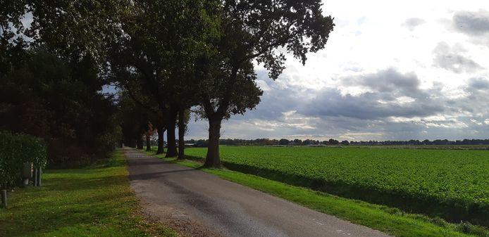 De Schuineweg in Westerhaar-Viezenveensewijk.