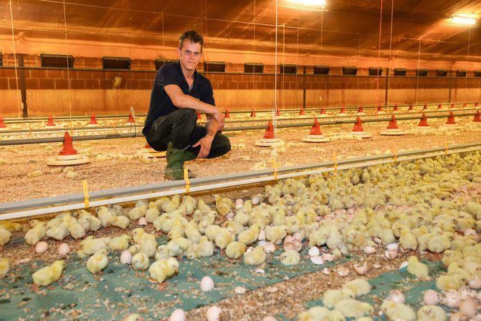 Pluimveehouder Gydo van den Boomen (28) uit Someren wil over twintig jaar graag nog boer zijn.