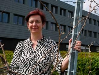 Campus Wemmel finalist bij Strafste School