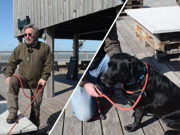 Hondenpenning voor honden aan de lijn