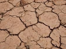 Vooral het westen van de Brabantse bodem snakt nog altijd naar regen