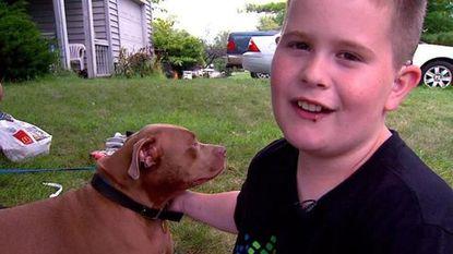 Pitbull redt dove jongen uit brand
