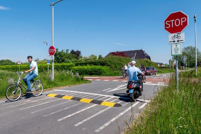 De drempels in de Rijkerswoerdsestraat die ongelukken op het RijnWaalpad moet voorkomen zijn na enkele dagen alweer gestolen.