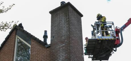 Jonge kat zit 24 uur op een dak in Apeldoorn en houdt  buurtbewoners wakker