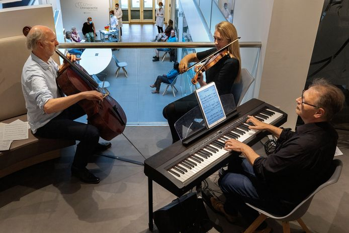 De huisartsen van Medisch Centrum Aalst (MCA) prikken op de praktijk deze dagen mensen van 60 tot en met 62 jaar oud. Om het wachten na de vaccinatie te veraangenamen én de kunst- en cultuursector een hart onder de riem te steken verzorgen Ruth Walpot (viool) Rob van Heck (piano) en Feico Halbertsma (cello) vanaf de balustrade van het MCA een concert voor de wachtenden.
