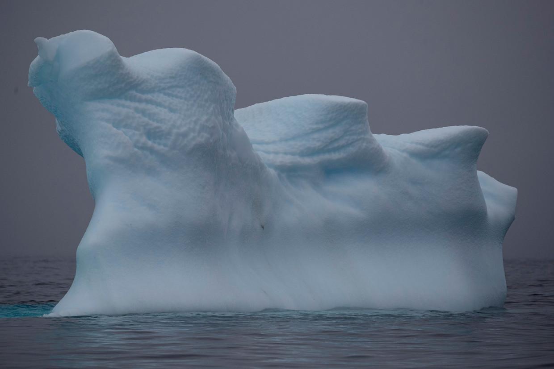 Een ijsberg bij Two Hummock Island, Antarctica.