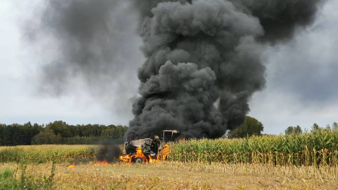 Maishakselaar gaat volledig in vlammen op, rookpluim kilometers ver in omtrek te zien
