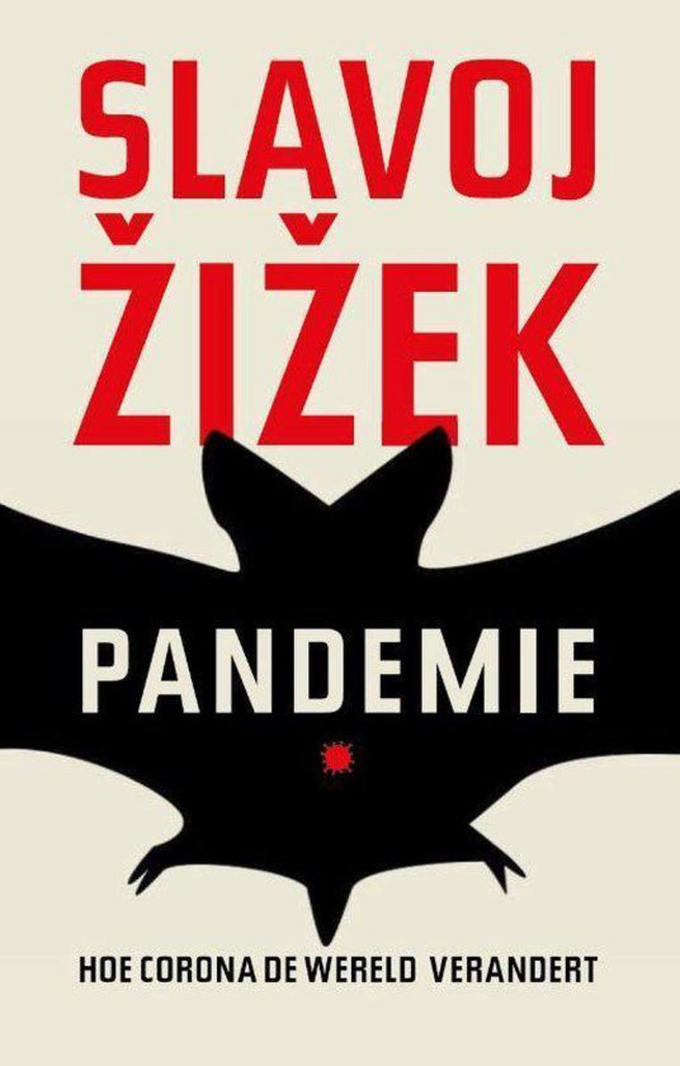 Slavoj Zizek, 'Pandemie. Hoe corona de wereld verandert', uitgeverij JEA, 152 p., 17,50 euro. Vertaling Menno Grootveld. Beeld RV