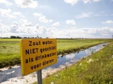 Voorlopig geen thermisch gereinigde grond op dijken