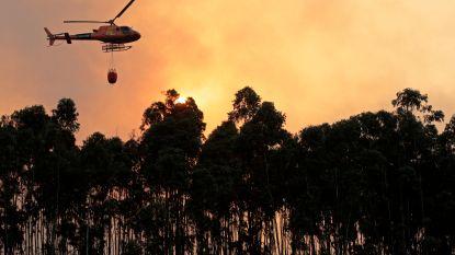 Zware bosbrand op amper 30 kilometer van Portugese toeristische stranden