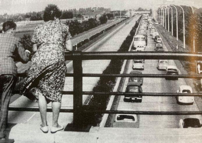 Een beeld uit de jaren 60 van één van de eerste files naar de kust en dat zorgde voor veel bekijks op de bruggen over de E40 in Beernem.