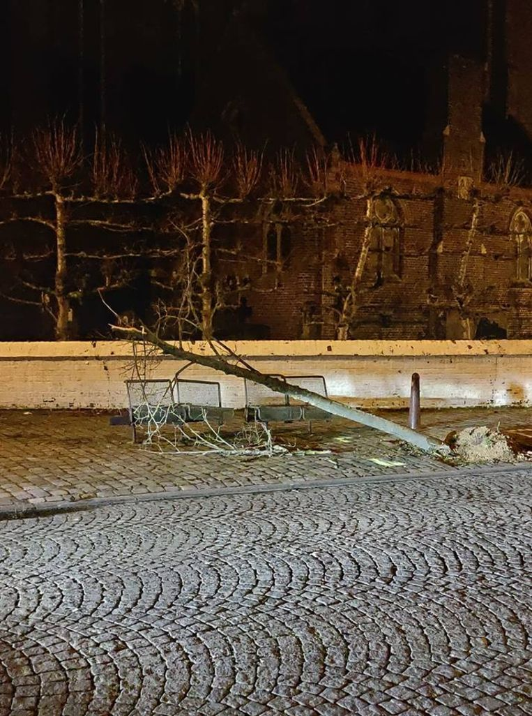 Het boompje aan de kerk raakte door de klap zwaar beschadigd.