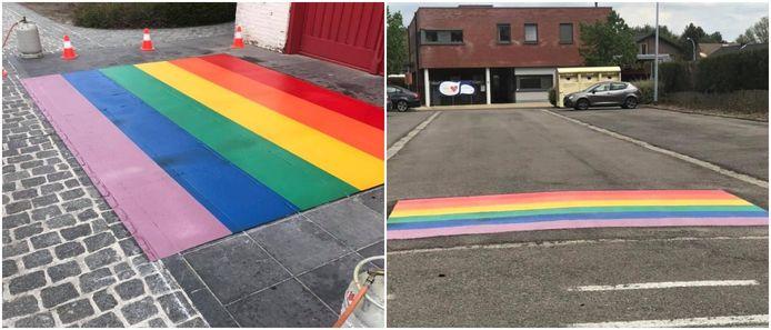 Twee van de vier nieuwe regenboogvlaggen in Dessel.