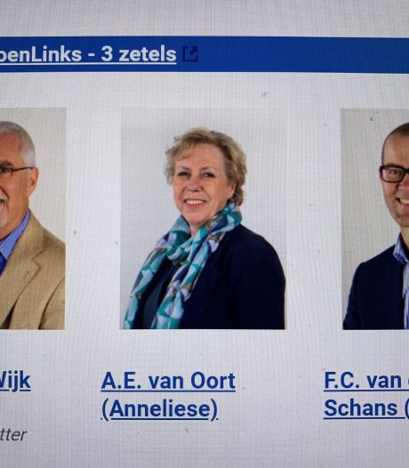 Gemeenteraad Zaltbommel maakt einde aan namenruzie PvdA/GroenLinks