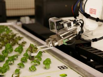 Australië krijgt eerste volledig geautomatiseerde boerderij