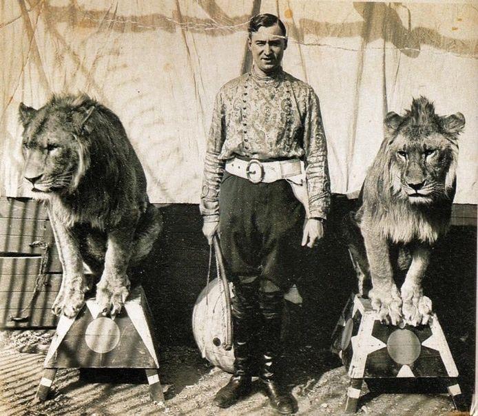 Carlo Stevens met twee van zijn leeuwen