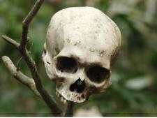 Bienvenue à Darién Gap, la jungle la plus dangereuse du monde