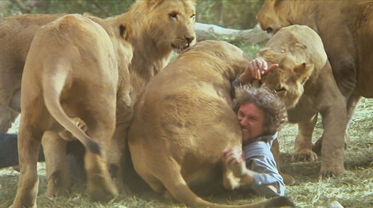 Noel Marshall met de leeuwen in Roar. Beeld