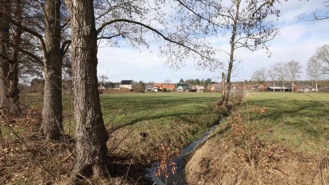"""Engsbergen krijgt gloednieuwe woonbuurt met 90 woningen: """"Beekvallei en knotwilgen behouden hun plek"""""""