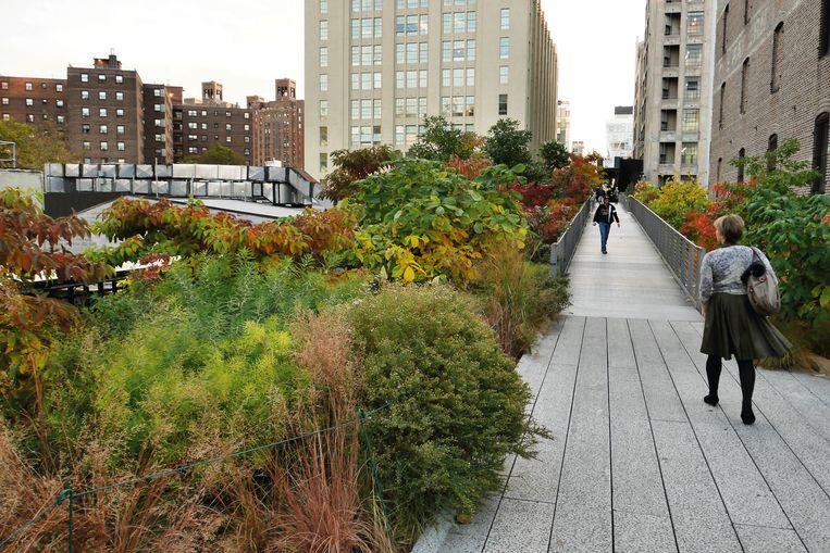 De High Line in New York, een park dat is aangelegd op een kilometerslange oude spoorlijn. Uit het boek 'Oudolf Hummelo'. Beeld