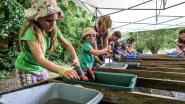 Archeologiedagen: met je vingers in de aarde graven in het verleden van Ieper