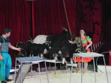 Geen shows bij Gebouw-T en circus kan ook niet doorgaan