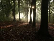 Crossers rijden wandelaars (bijna) omver en natuurliefhebbers vinden maar geen rust: óók in het bos zijn regels