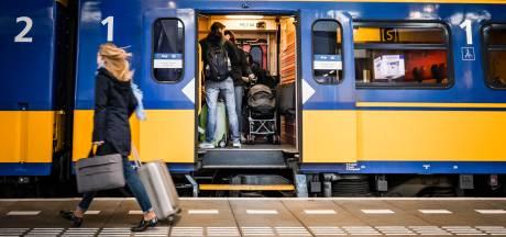 Geen treinen tussen Apeldoorn en Amersfoort na aanrijding met ree