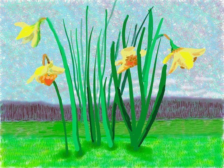 David Hockney, 'No. 118. 16 maart 2020.'  Beeld David Hockney