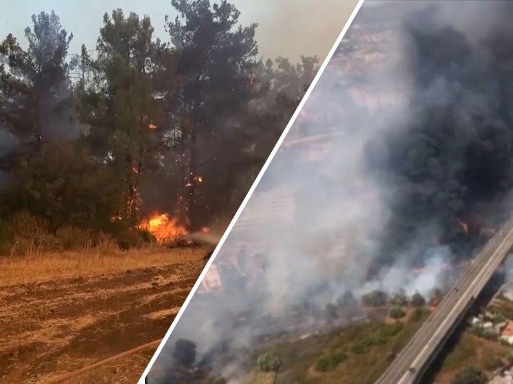 Zuidoost-Europa evacueert vanwege bosbranden door hittegolf