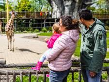 Uitstapje naar de dierentuin? Deze parken ken je waarschijnlijk nog niet