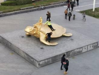 """""""Schuldigen zullen opdraaien voor schade"""": Iconische gouden schildpad wordt opnieuw beklommen, tot frustratie van burgemeester"""