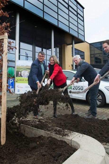 Een rode beuk verdampt 27.000 liter water en is goed voor tien airco's, dus worden ze geplant in Lichtenvoorde
