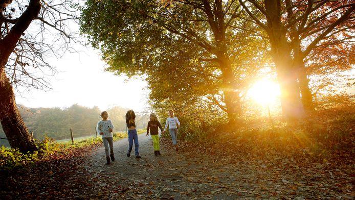 Kinderen wandelen door het bos in de buurt van Bilthoven.