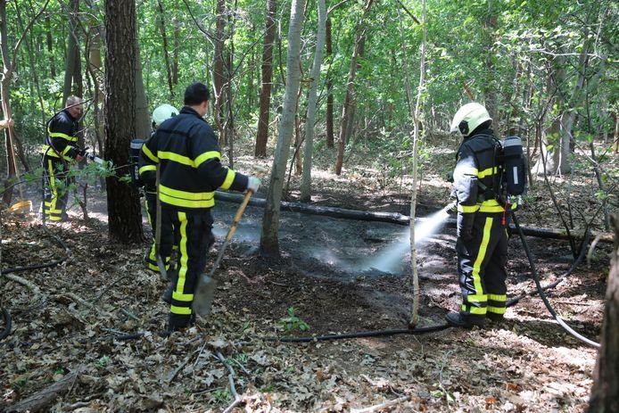 Natuurbrand Wouwse Plantage op het nippertje voorkomen.