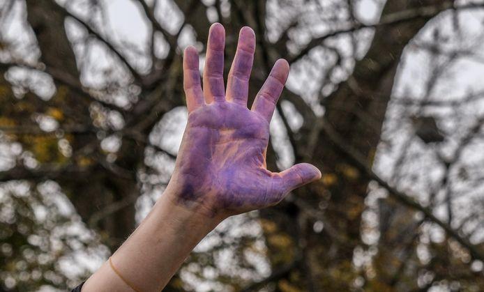 Met de paarse handen werd het stop-teken gemaakt, tegen gendergeweld.