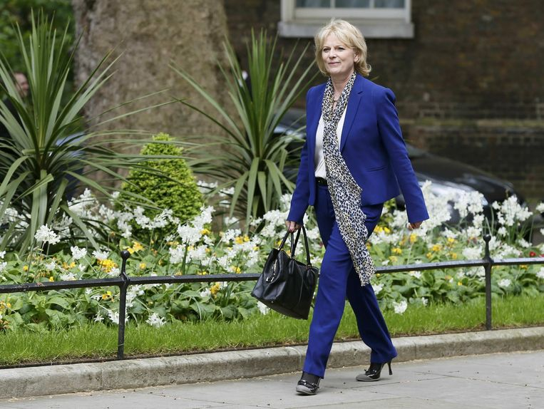 Anna Soubry. Beeld reuters
